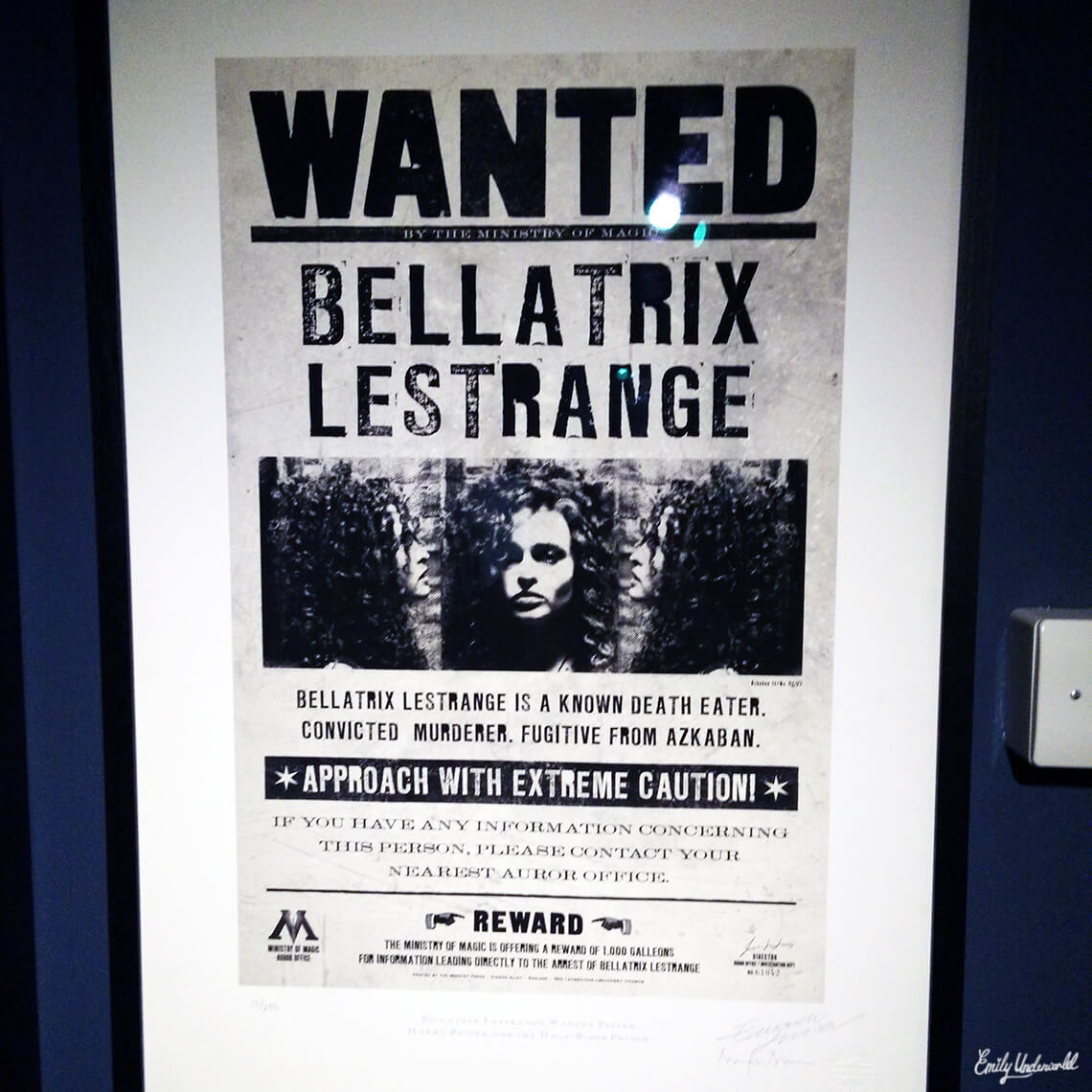 wanted-bellatrix-lestrange