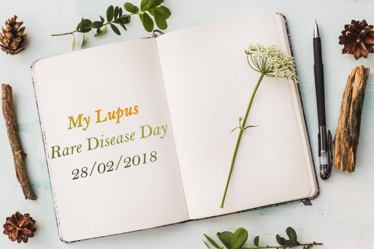 My Lupus | Rare Disease Day