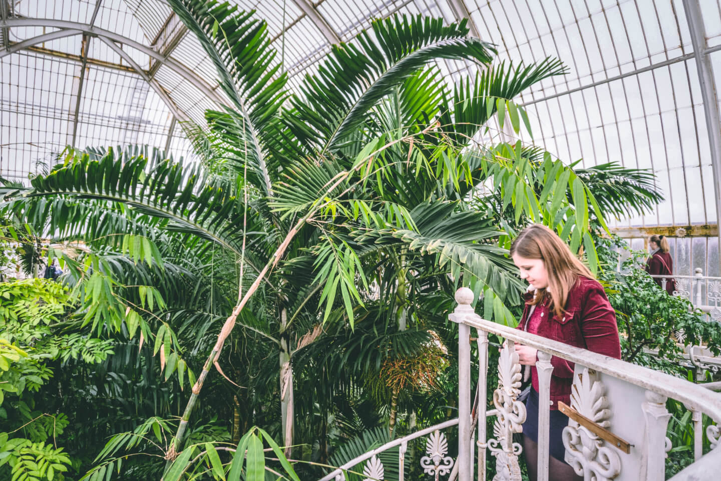 Looking at the Palm House, Kew Gardens