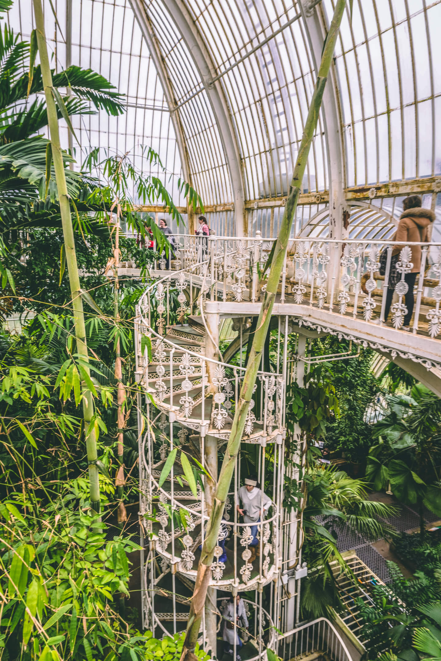 Victorian Iron Staircase in the Palm House, Kew Gardens